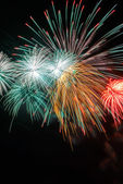 Colorful firework in a night sky, celebration for July 4th