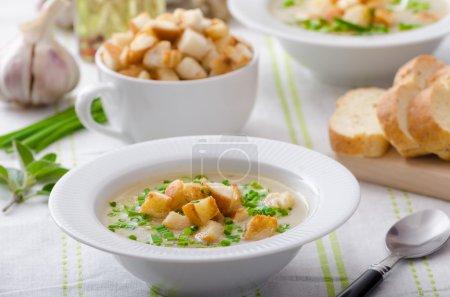 Photo pour L'ail soupe - ail bio, oignon rouge, tous les ingrédients naturels, manger propre - image libre de droit