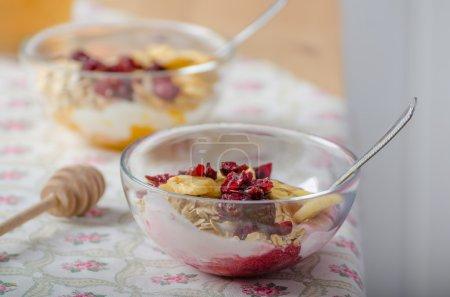 Homemade yogurt with dried fruit