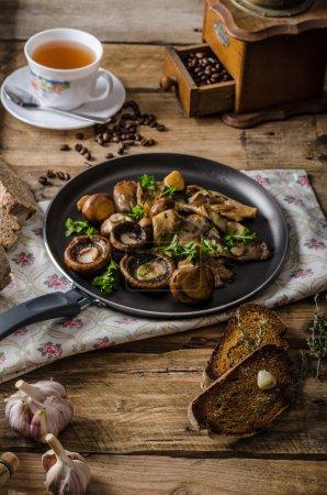 Photo pour Champignons frais frit avec toast ail, herbes, pain maison - image libre de droit