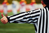 Referee of the american football