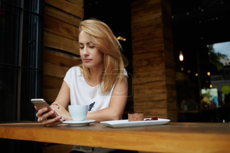 Gorgeous young lady browsing wifi