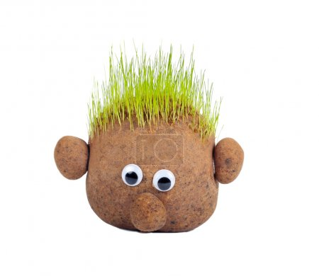 Photo for Head with grass on top over white background - Royalty Free Image