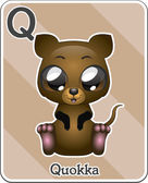 Animal alphabet card ( Q is for Quokka )
