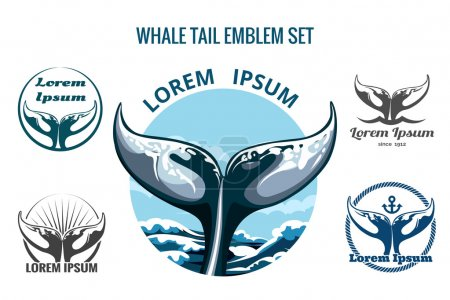 Illustration for Whale tail logo or emblem set. Only free font used. Isolated on white background - Royalty Free Image