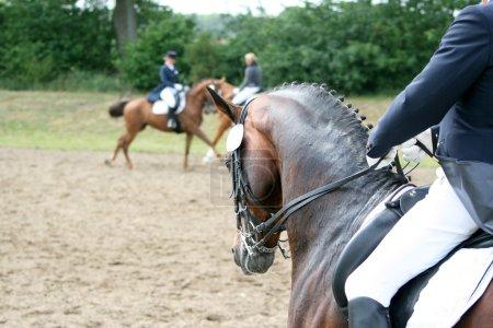 tournament horse is ridden