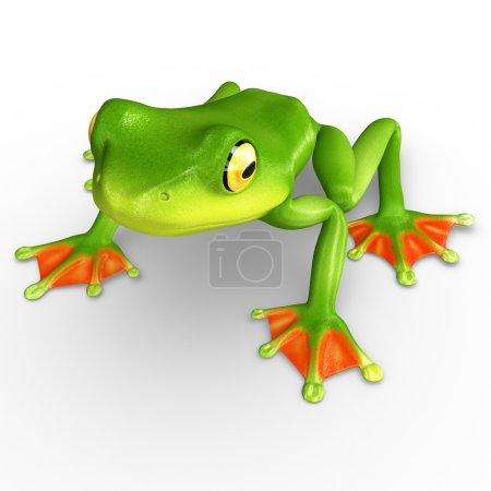 Green Flyng frog