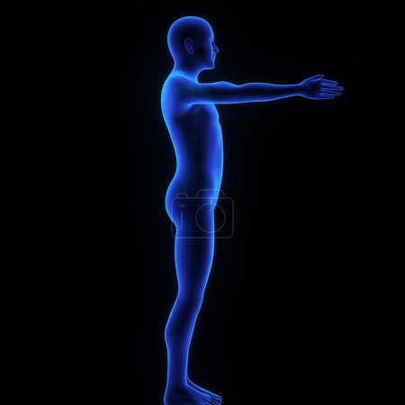 Shoulder Joint Exercise