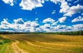 landscape in the background of blue sky