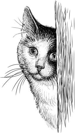 Illustration pour Dessin vectoriel du portrait d'un chat domestique . - image libre de droit