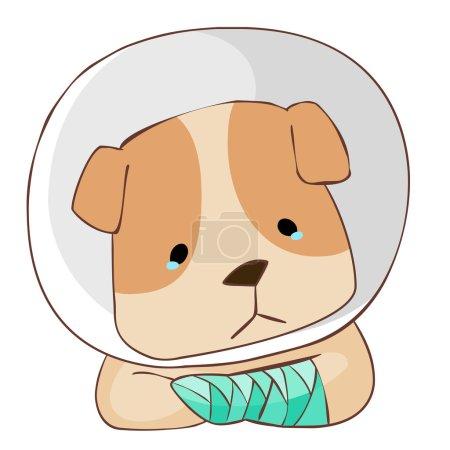 dog injury splinting leg vector illustration