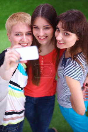 Female friends taking selfie with mobile phone