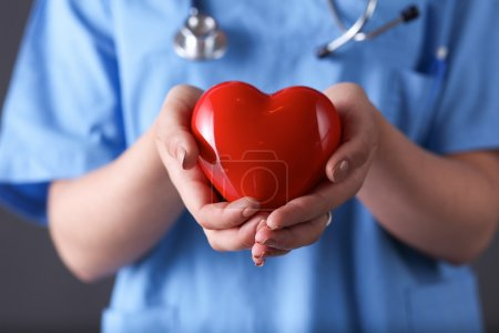 Doctor with stethoscope holding heart, isolated on gray background