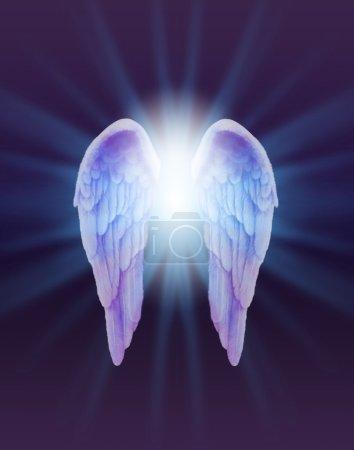 Foto de Un par de alas de Angel plumas finamente con una luz blanca brillante que estalla entre irradiando hacia fuera sutil azul sobre un fondo morado y negro oscuro - Imagen libre de derechos