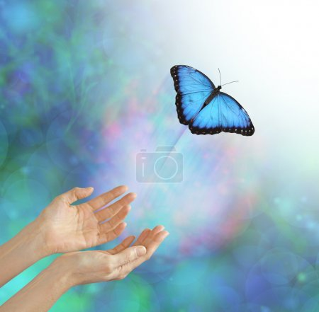Photo for Metaphorical representation of releasing or letting a soul go, into the light, using a butterfly, female hands and an ethereal background & white light - Royalty Free Image