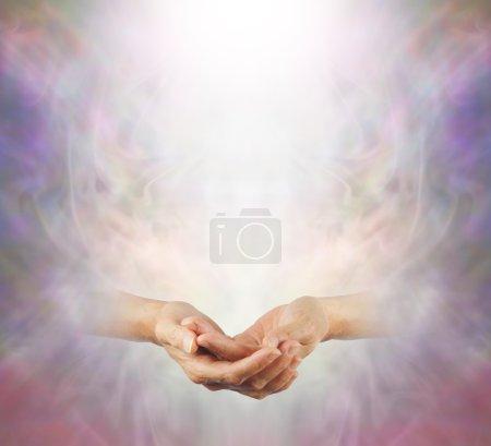 Photo pour Une paire de mains féminines doucement avec un arbre de lumière blanche au-dessus sur un fond vaporeux éthéré brumeux, offrant beaucoup d'espace de copie - image libre de droit