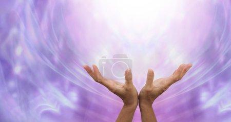 Photo pour Les mains féminines tendues envoyant la guérison dans la lumière ci-dessus et un fond de formation d'énergie pourpre éthéré - image libre de droit