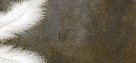 Photo pour Une plume blanche dans chaque coin gauche d'un sombre large couleur fond effet pierre avec beaucoup d'espace de la copie sur le côté droit - image libre de droit