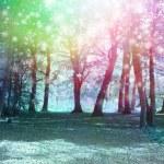 Jade blue colored woodland scene with rainbow spar...
