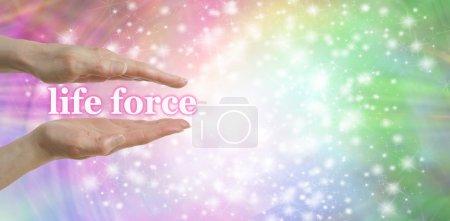 """Photo pour Femelle parallèle des mains avec les mots """"force de vie, flottant entre entouré par une étincelle sur un pastel arc-en-ciel de couleur fond et beaucoup d'espace de copie - image libre de droit"""