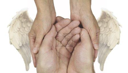 Photo pour Cuppé mains masculines tenues doucement par des mains féminines avec des ailes d'ange de chaque côté sur un fond blanc - image libre de droit