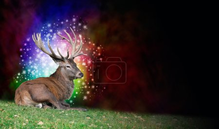 Stag Party Background