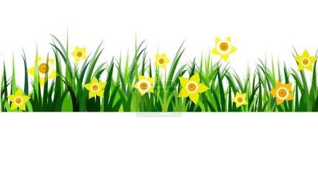 Green Grass seamless daffodils