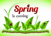 Spring positive postcard for congratulations with beginning of spring
