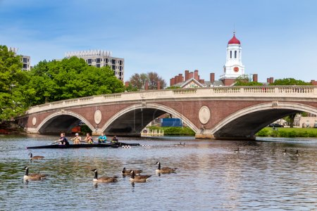 A Harvard's Crimson Lightweight Crew practicing for a race in th