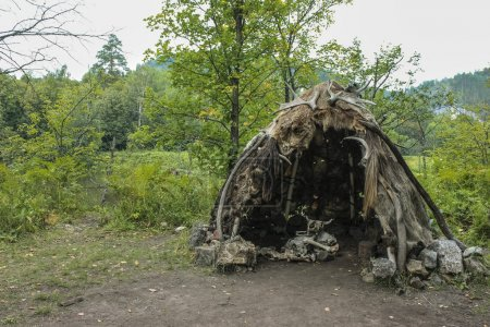 Нabitation of ancient man. Prehistoric house