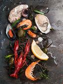 Lahodné čerstvé mořské plody