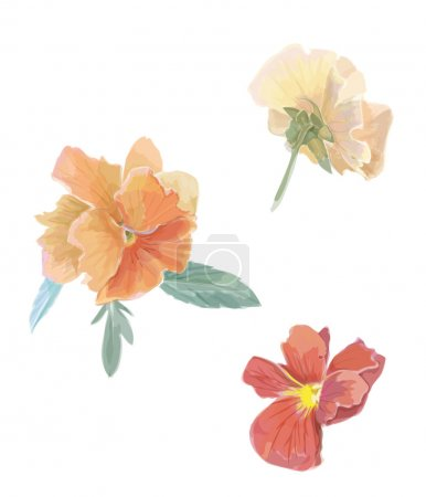Set of flowers viola violet. Watercolor vector illustration. Isolated design elements. Floral set. Gardening.