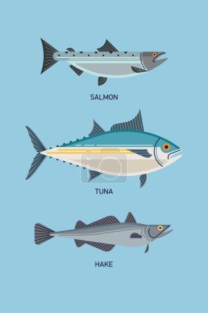 Salmon, tuna and hake.