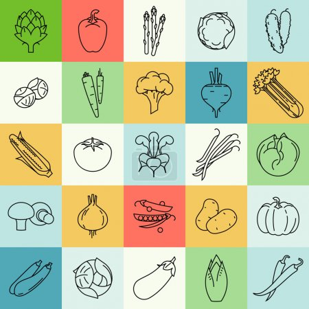 Vector modern flat design vegetables and green sal...