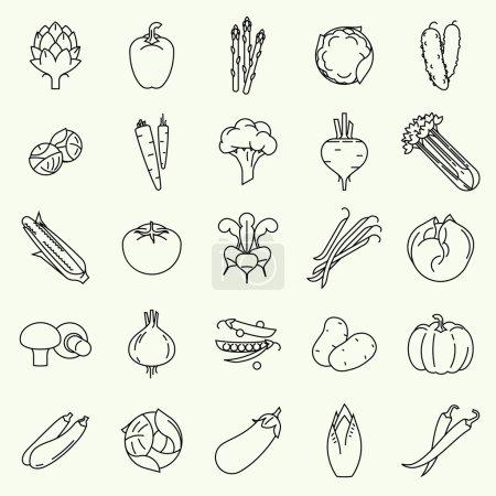 Illustration pour Légumes vectoriels design plat moderne et les salades vertes icônes de ligne. Grande collection de pinces à légumes contour avec endives, betteraves, choux de Bruxelles, courgettes, laitue iceberg, et plus - image libre de droit