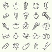Vector modern flat design vegetables and green salads line icons Large collection of contour vegetable clip art featuring endive beetroot brussels sprouts zucchini iceberg lettuce and more