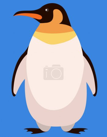 Illustration for Penguin front view. Arctic animal in cartoon style. - Royalty Free Image