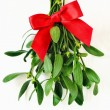 Mistletoe bunch decorated for christmas, stylized ...