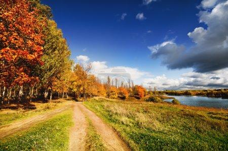 Autumn landscape with path