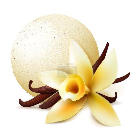 Illustration pour Cuillère de crème glacée à la vanille, vecteur réaliste illustration isolée - image libre de droit
