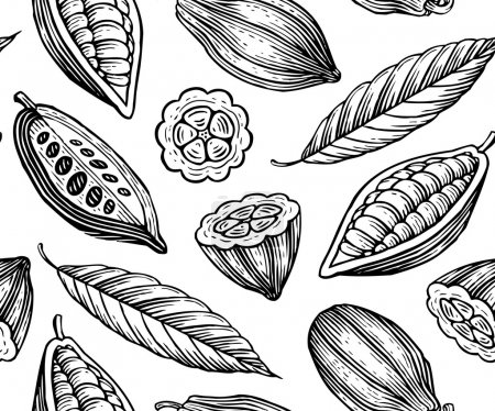 Illustration for Engraved pattern of leaves and fruits of cocoa beans - Royalty Free Image