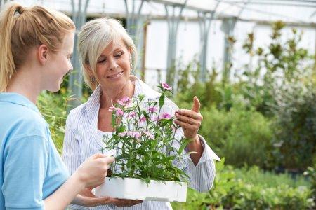Foto de Mujer pidiendo personal planta asesoramiento Garden Center - Imagen libre de derechos