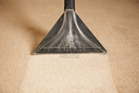 Photo for Close Up Of Professionally Cleaning Carpet Cleaner - Royalty Free Image