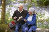 Senior Couple Resting On Walk Through Bluebell Wood