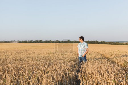 man on wheat field