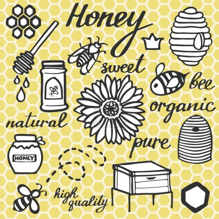 Honey set.  Hand-drawn doodle drawing on the comb background.