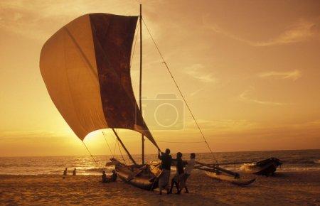 Dhoni Fishingboats at the coast of Nagombo