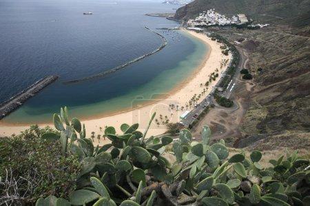 Espagne Canaries Tenerife