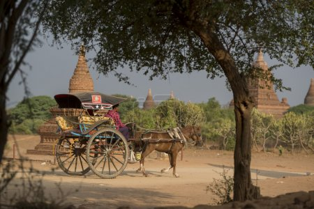 ASIA MYANMAR BAGAN TEMPLE PAGODA TRANSPORT