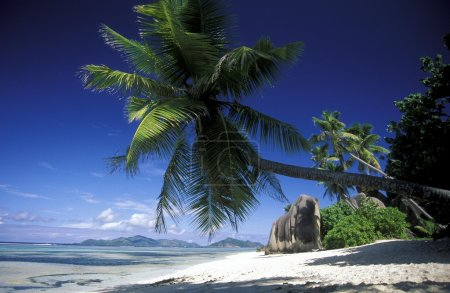 Beach on the coast of the Island La Digue